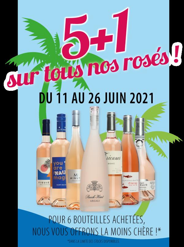 Vins rosés en promo sur Dijon